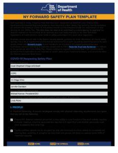 GSVE SNF Safety Plan pdf 232x300 - GSVE SNF Safety Plan